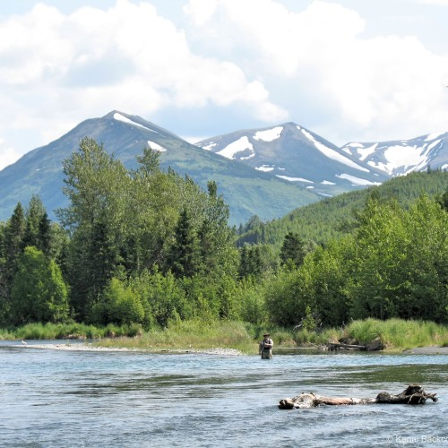 Backcountry Fly Fishing Adventure