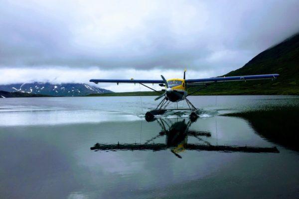Kenai Mountains and Glaciers Alaska Backpacking-131