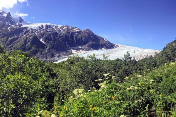 Seward-Wilderness-Hiking-Alaska-1
