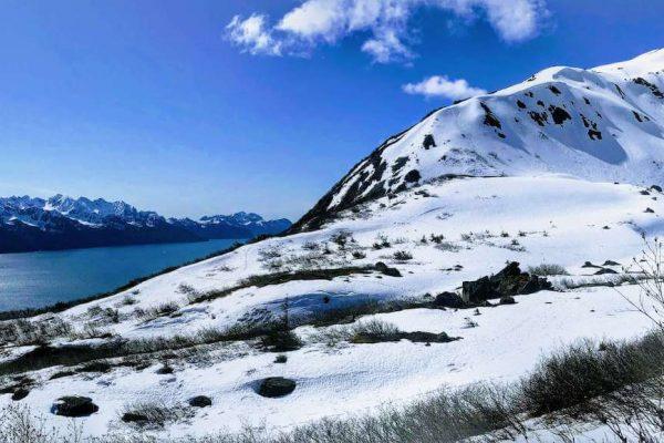 Seward Wilderness Hiking - Kenai Backcountry Adventures-1