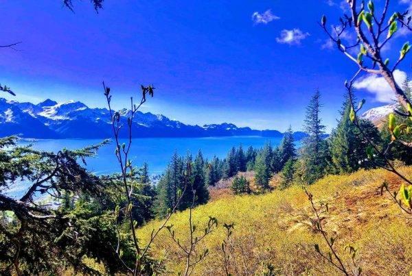 Seward Wilderness Hiking - Kenai Backcountry Adventures