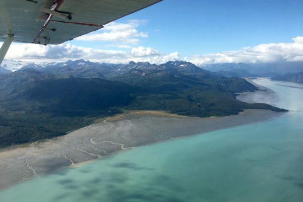 ALASKA BEARS TRIP-1