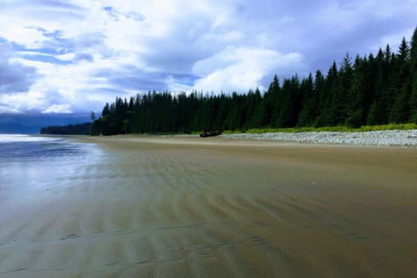 ALASKA BEARS TRIP-11