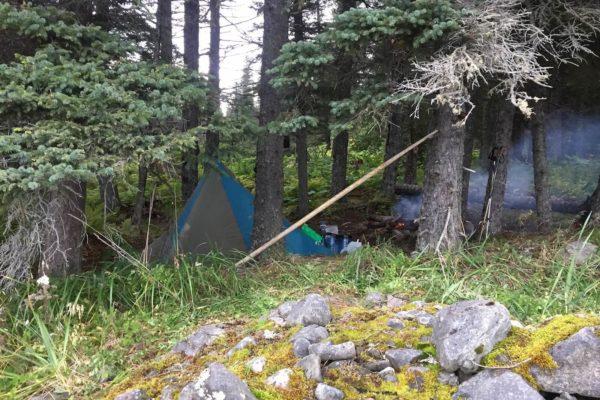 ALASKA BEARS TRIP-12