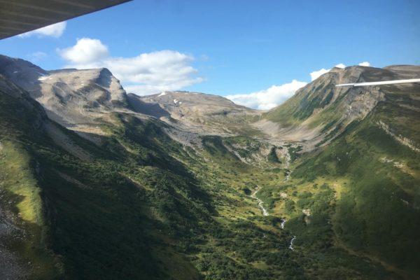 ALASKA BEARS TRIP-2
