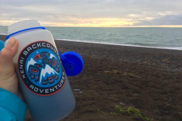 ALASKA BEARS TRIP-4