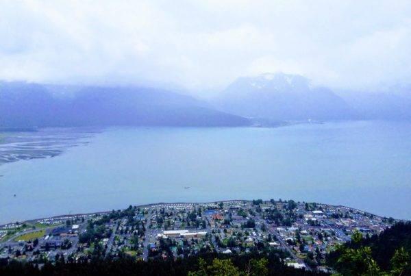 Seward Alaska Trips and Adventures