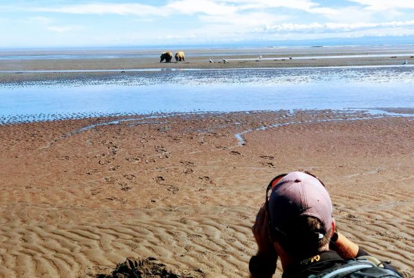 Bear Viewing Adventure Lake Clark National Park Seward Departure
