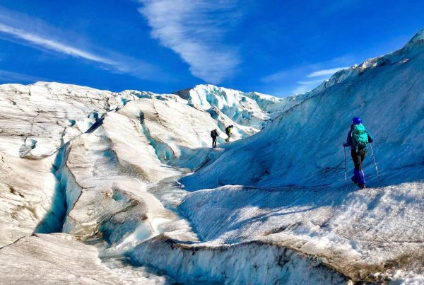 Alaska Hiking Adventures | Kenai Backcountry Adventures