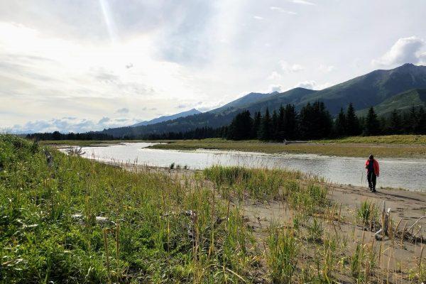 Alaska Bears Base Camp Kenai Backcountry Adventures_2819