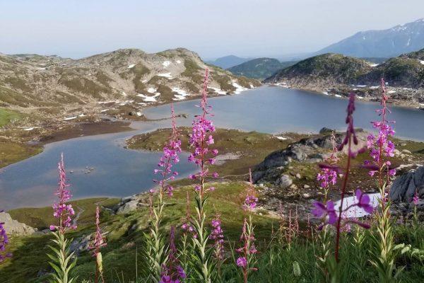 Mountains-Glaciers-Base-Camp-Lake-Clark-National-Park-Alaska7