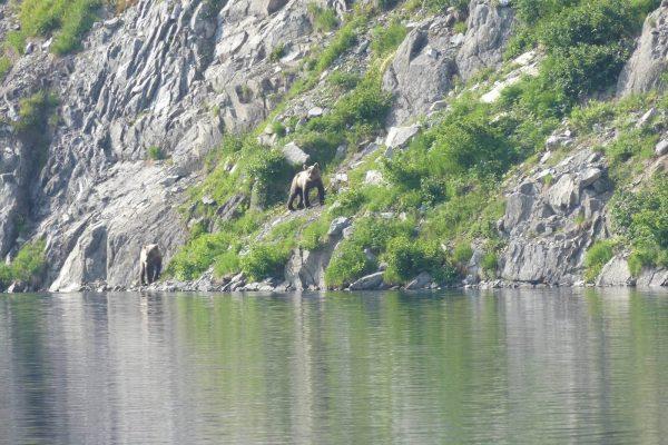 Mountains-Glaciers-Base-Camp-Lake-Clark-National-Park-Alaska86